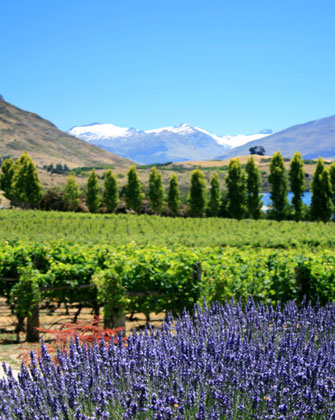 new-zealand travel scenery