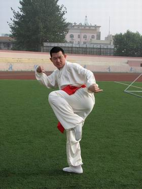 tang lang quan style picture