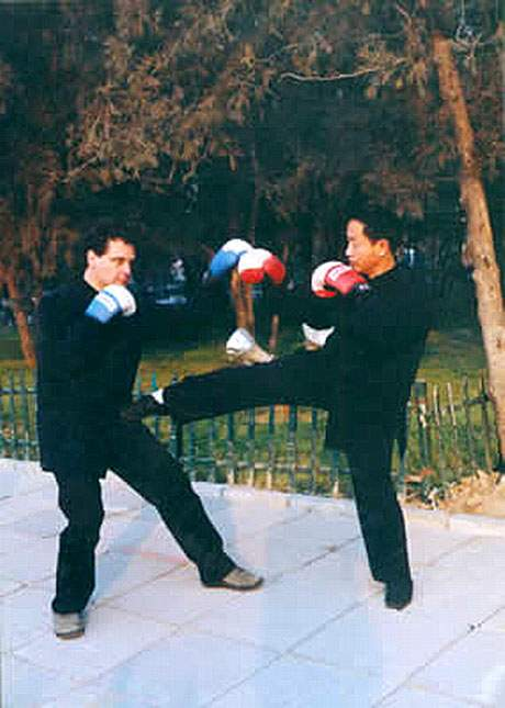 yi quan training techniques picture