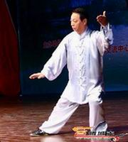 kung fu mian quan demonstration