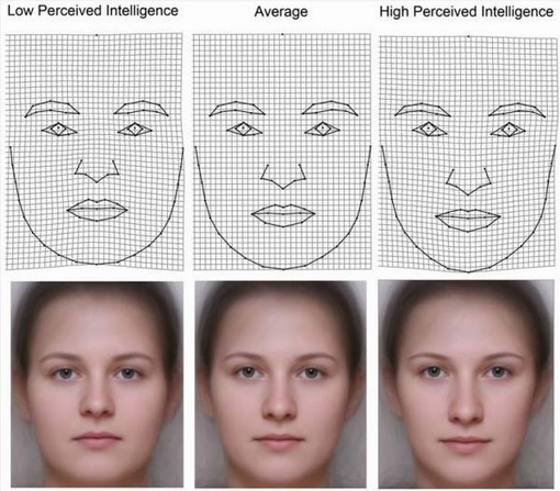 Perceived Intelligence and Female Faces